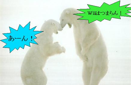 白熊がケンカしている画像