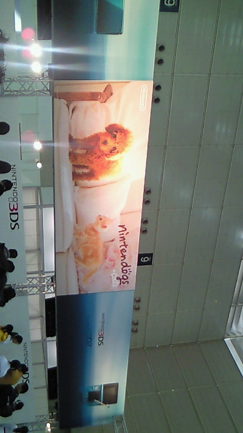 【3DS体験会レポ】ニンテンドックス+キャッツ
